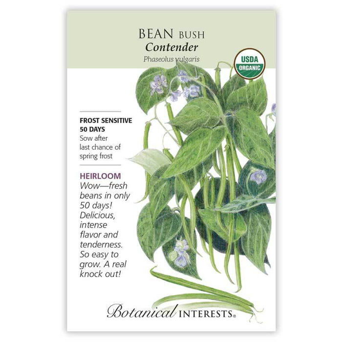 Botanical Interests, Bean, Contender Bush Organic