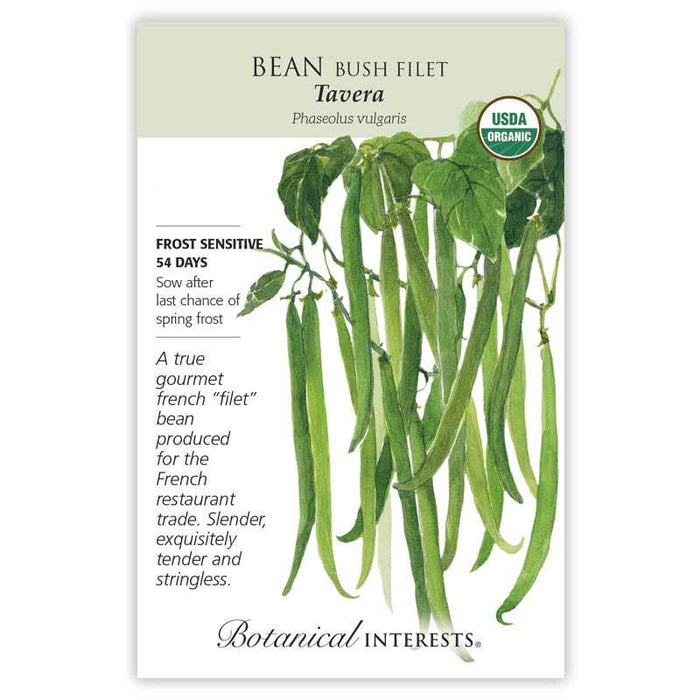 Botanical Interests, Bean Tavera Filet Bush Organic