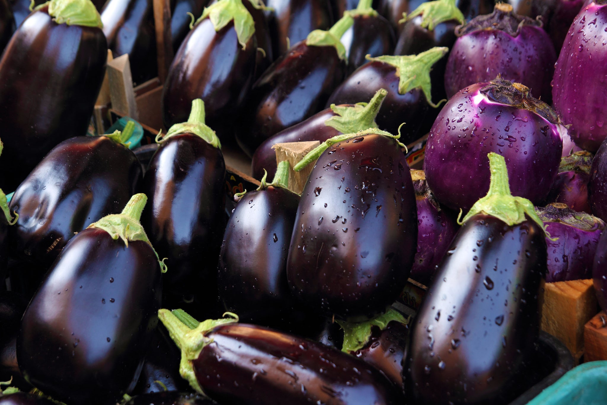 Eggplant 1kg - organically grown and spray free Eggplant