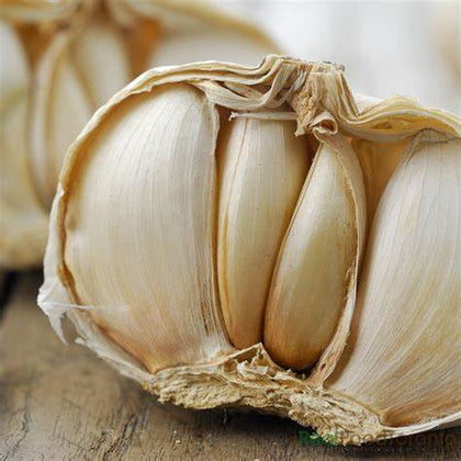 Garlic - new season  purple/white Certified Organic this week