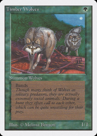 Timber Wolves [Unlimited Edition] | Dragons Den Cards & Games