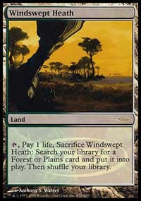 Windswept Heath [Judge Gift Cards 2009] | Dragons Den Cards & Games