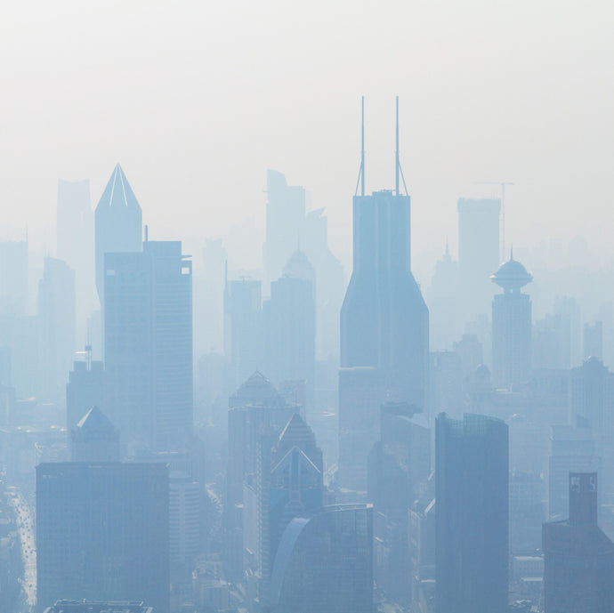 The Effects of Air Pollution on the Skin