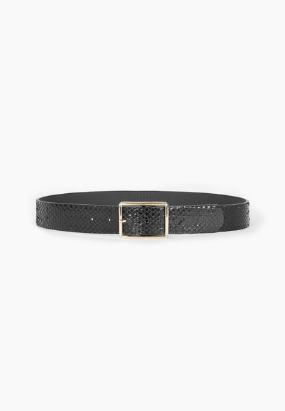 GALLEON belt