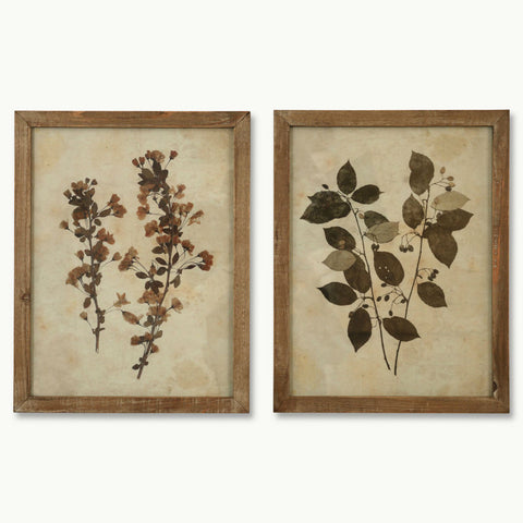 Set of Two Cream Framed Leaf Prints - Set One | Annie Mo's