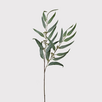 Green Willow Eucalyptus Spray 90cm