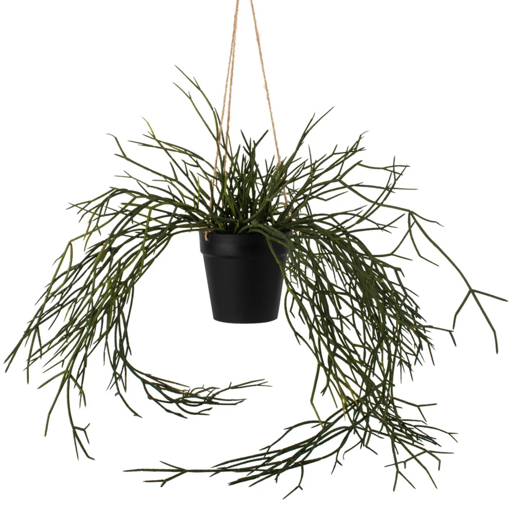 Hanging Faux Grass in Pot 55cm | Annie Mo's