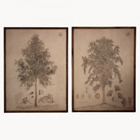 Set of Two Large Chinese Inspired Framed Prints 100cm | Annie Mo's