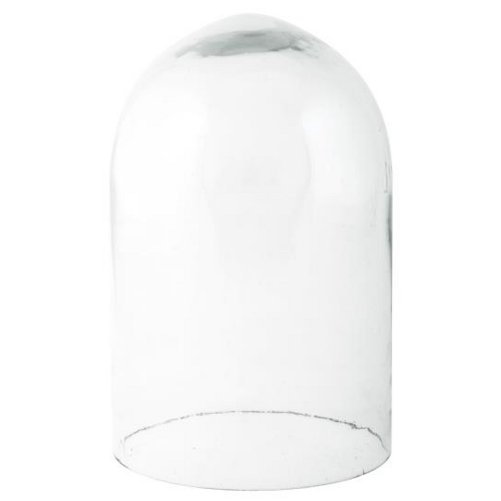 Small Glass Dome 15cm | Annie Mo's