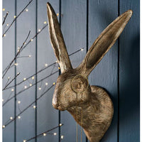 Golden Monocled Hare Wall Mount | Annie Mo's