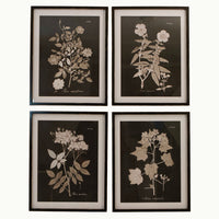 Set of Four Midnight Botanical Wooden Framed Wall Art | Annie Mo's
