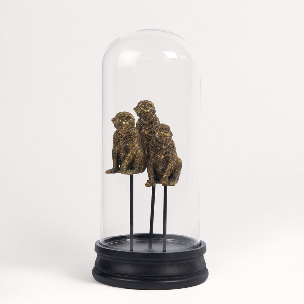 Golden Monkeys in Glass Dome 30cm | Annie Mo's