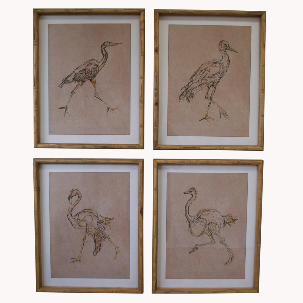 Set of Four Birds Framed Prints 50cm | Annie Mo's