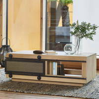 Elements Coffee Table with Sliding Door | Annie Mo's