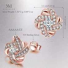 Load image into Gallery viewer, NM NINAMISS Earrings Rose Gold Plated Earrings Hypoallergenic Birthday Gift