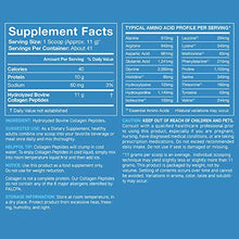 Load image into Gallery viewer, Collagen Peptides Powder | Non-GMO Verified, Certified Paleo Friendly and Gluten Free - Unflavored (16oz Jar)