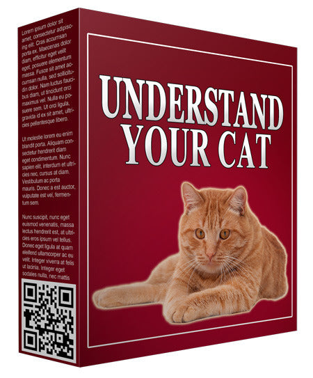 Understand Your Cat! Download 4 FREE now!