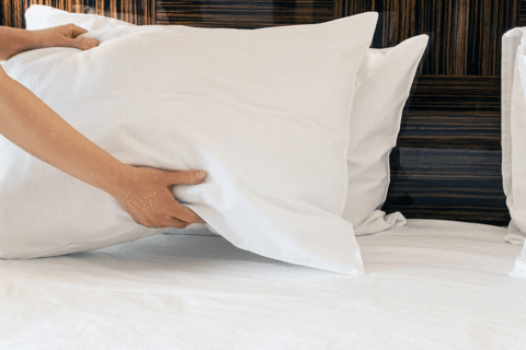Person Fluffing Freshly Washed Pillows