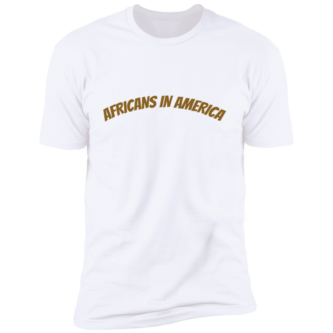 Image of Africans in America (Brown)
