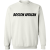 Africans In America (Boston)