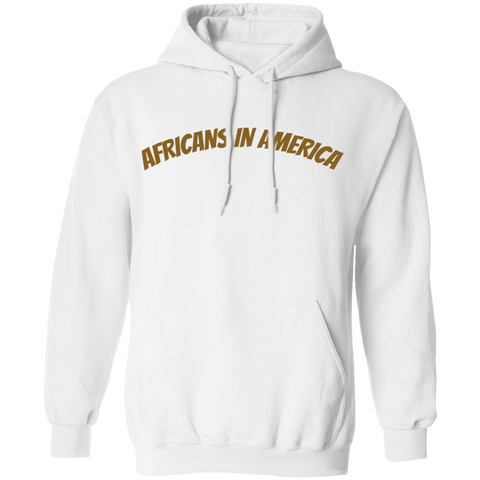 Africans In America (Brown)