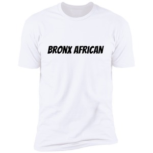 Africans In America (Bronx)