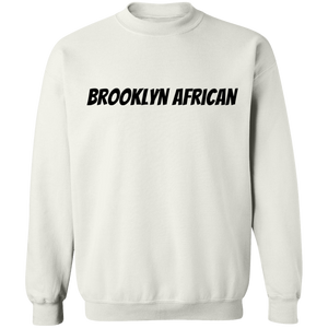 Africans In America (Brooklyn)