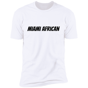 Africans In America (Miami)