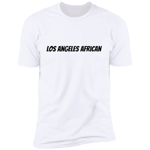 Africans In America (Los Angeles)
