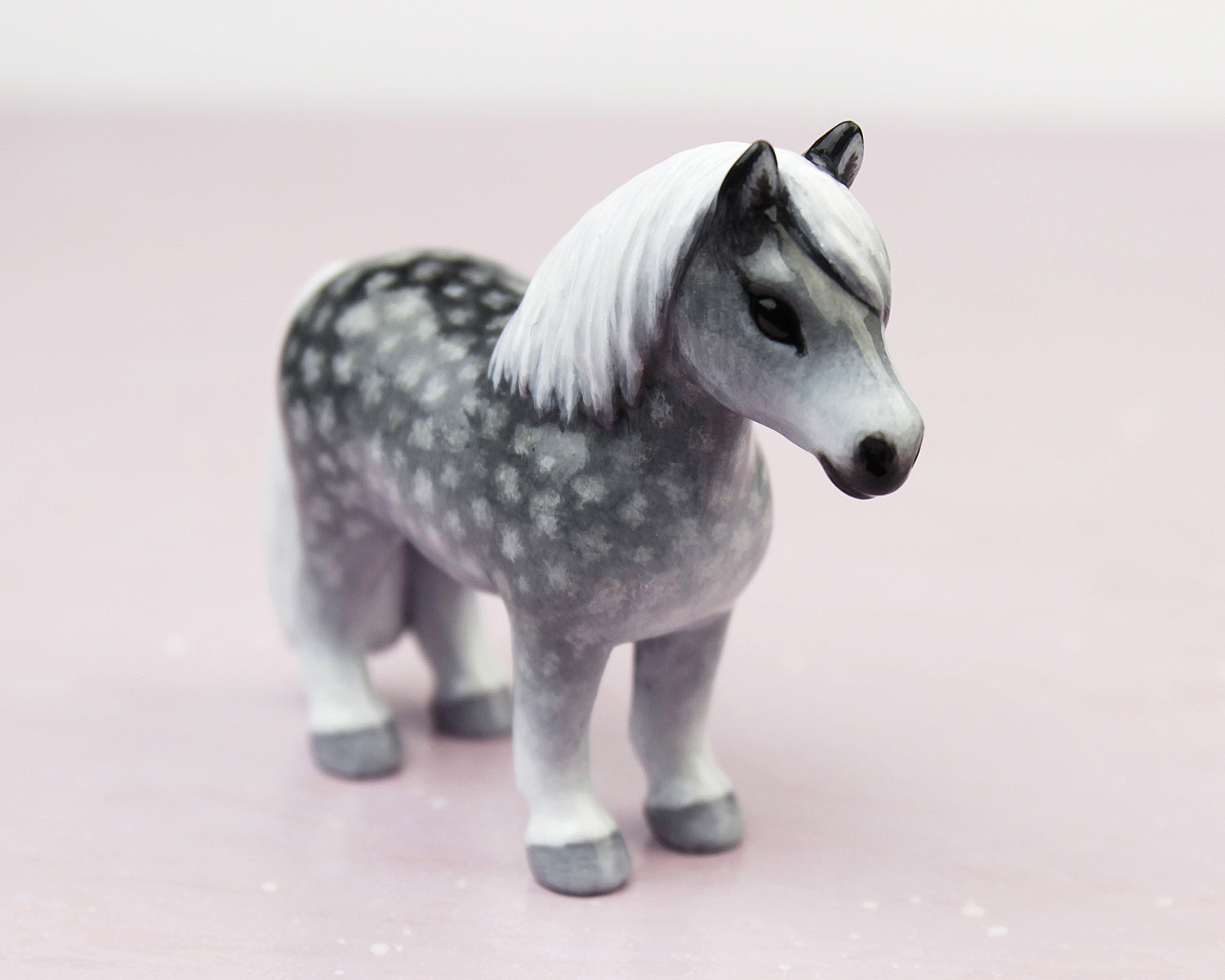 dapple grey pony with white mane