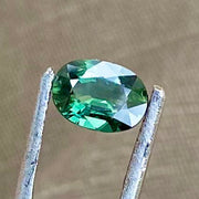 1.07 CT, Sapphire, Forest Green Color, VS Eye Clean, Oval Shape Gemstone