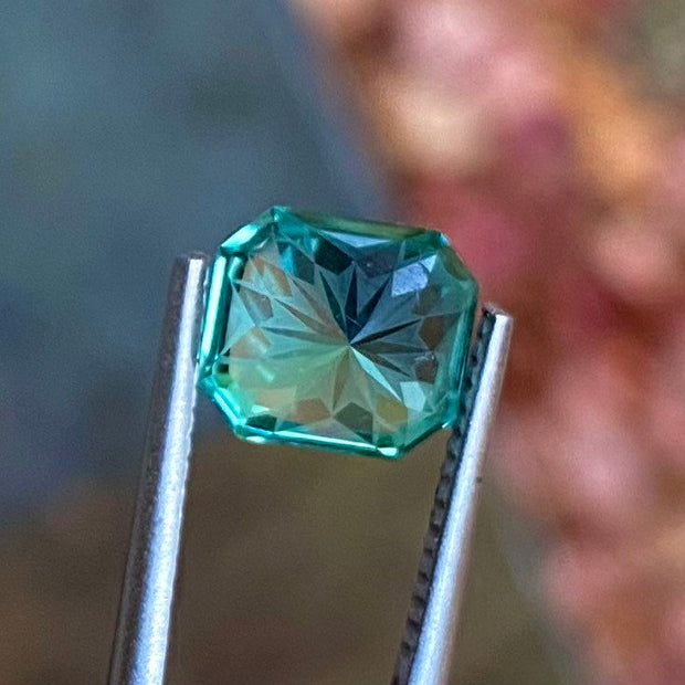 2.66 CT Green Tourmaline, Certified, Flawless Clarity, Fancy Cut Gemstone
