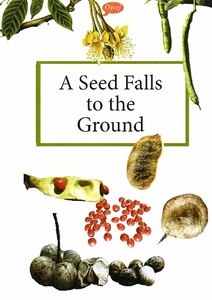 A Seed Falls to the Ground