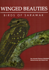 Winged Beauties: Birds of Sarawak