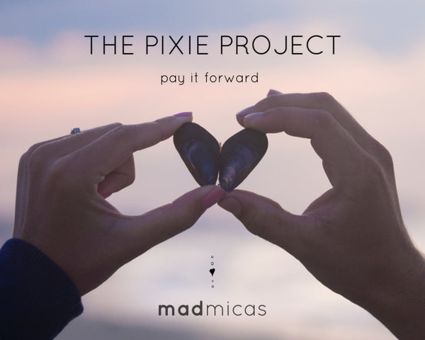 The Pixie Project