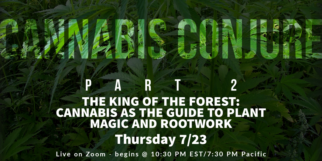 The King of the Forest - the Alchemy of Plants with Cannabis as Master Key Webinar