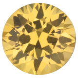Good Looking Round Cut Loose Yellow Sapphire Gems in Grade AA