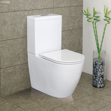Load image into Gallery viewer, Fienza Empire Slim Seat Back-To-Wall Toilet Suite -Yeomans Bagno Ceramiche