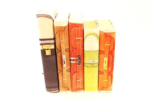 Iconic Bag Book-Series