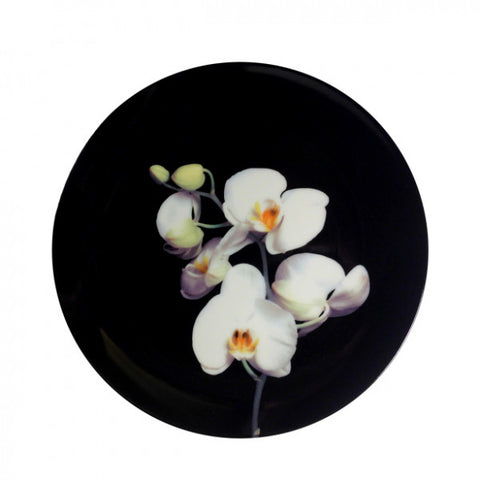 "Mapplethorpe ""Colour Orchid"""
