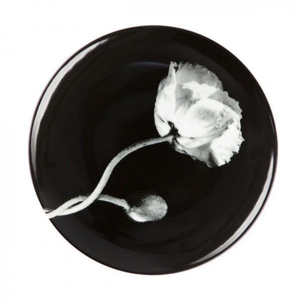 "Mapplethorpe ""Poppy"""