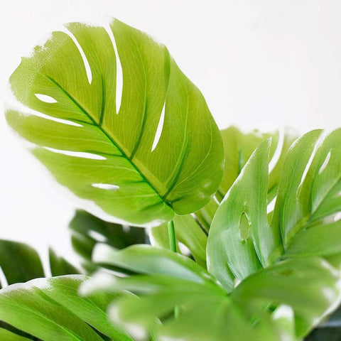 Green Turtle Leaves Artificial Plant Home Decor