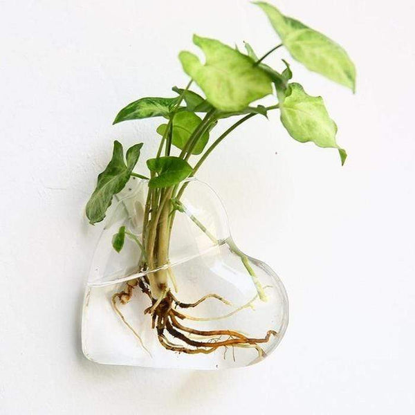 Hydroponic Glass Pot Indoor Garden Home Decor Wall Art