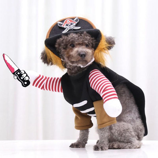 Halloween And Christmas Costumes For Dogs