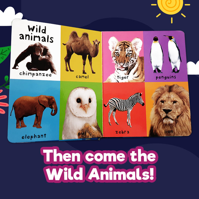 Priddy Books: First 100 Animals (Board Book)