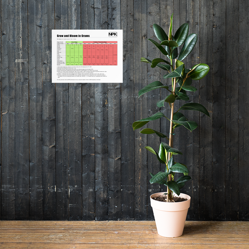 NPK RAW All-In-One Grow & Bloom Products Feeding Chart Grams Poster