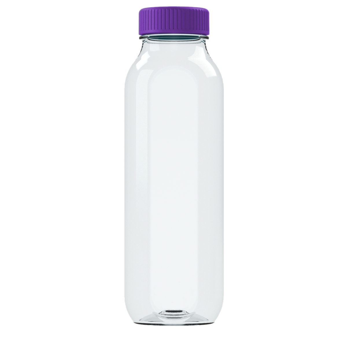 Amethyst Purple Cupanion Bottle