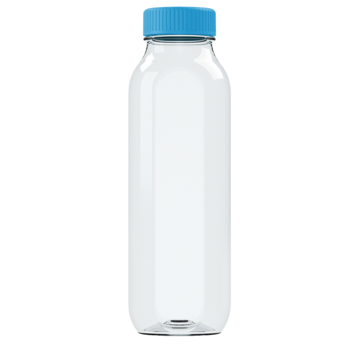 Dolphin Blue Cupanion Bottle