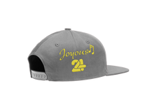 Load image into Gallery viewer, Gray Joyous 24 Cap