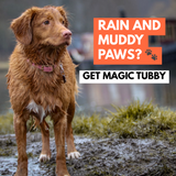Magic Tubby™ - Dog Paw Cleaner